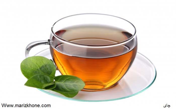 Camellia sinensis L,چای سبز,چای,Theaceae,Green tea,چاي,چاي سبز,چاي سياه,مريض خونه1490,وبسايت تخصصي اطلاعات پزشکي مريض خونه,Www.marizkhone (1)
