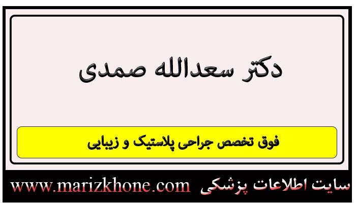 آدرس و تلفن دکتر سعدالله صمدی