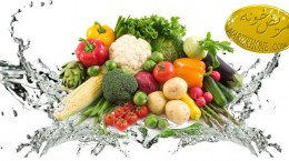هرگز سبزیجات را با مایع ظرفشویی یا نمک نشویید -اسهال-بیماری های عفونی-شست و شوی سبزیجات-شست و شوی سبزیجات با نمک-علت ابتلا به اسهال