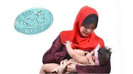 افزایش شیر مادر با گیاهان دارویی