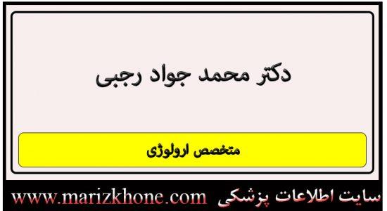 آدرس و تلفن دکتر محمد جواد رجبی