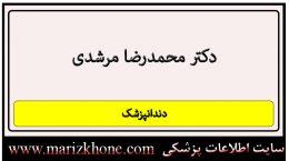 دکتر محمدرضا مرشدی