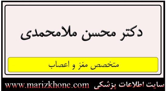 دکتر محسن ملامحمدی