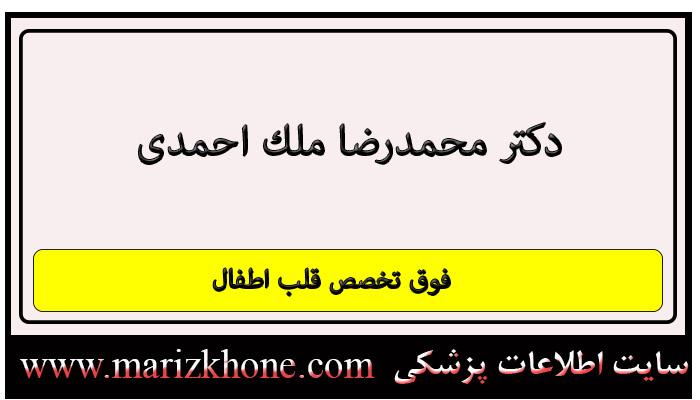 آدرس و تلفن دکتر محمدرضا ملك احمدی